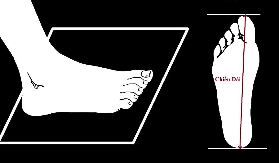 size giày, Những hướng dẫn lựa chọn size giày sao cho phù hợp với bạn nhất